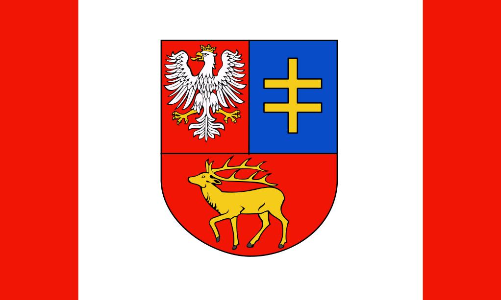 Flaga Powiatu Patrczewskiego